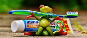 frog with toothbrush and paste
